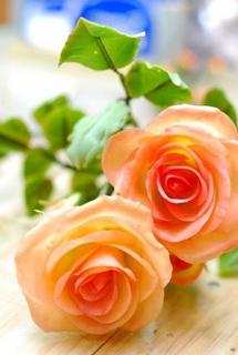 Керамическая флористика как бизнес идея