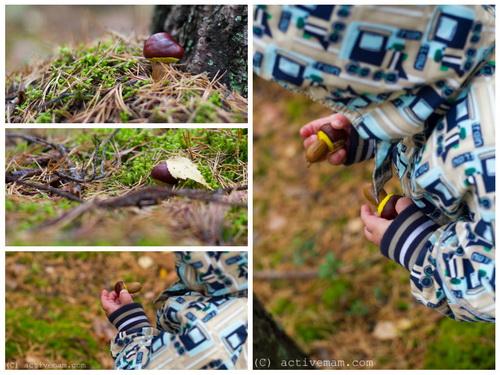 как сделать гриб