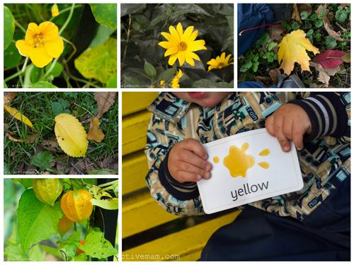 изучение цветов с ребенком