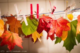 осенние листья в ванной